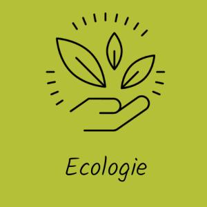 ecologie bien-etre equilibre durable - ecologie